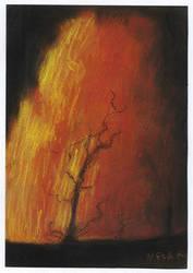 Lava by NelEilis