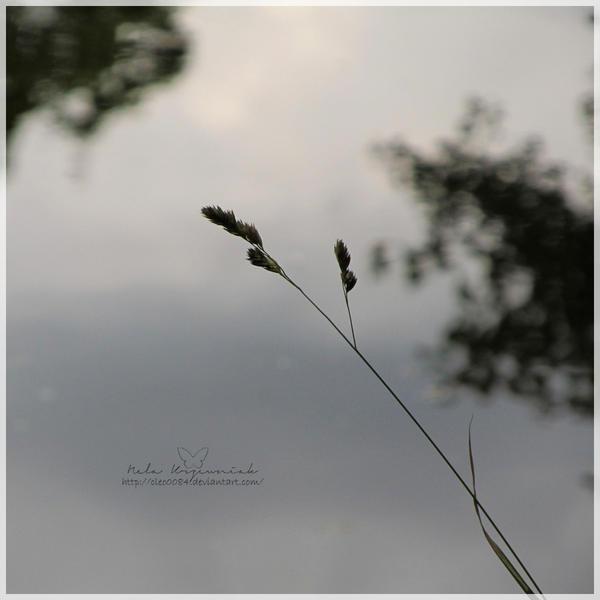 Melancholy by NelEilis