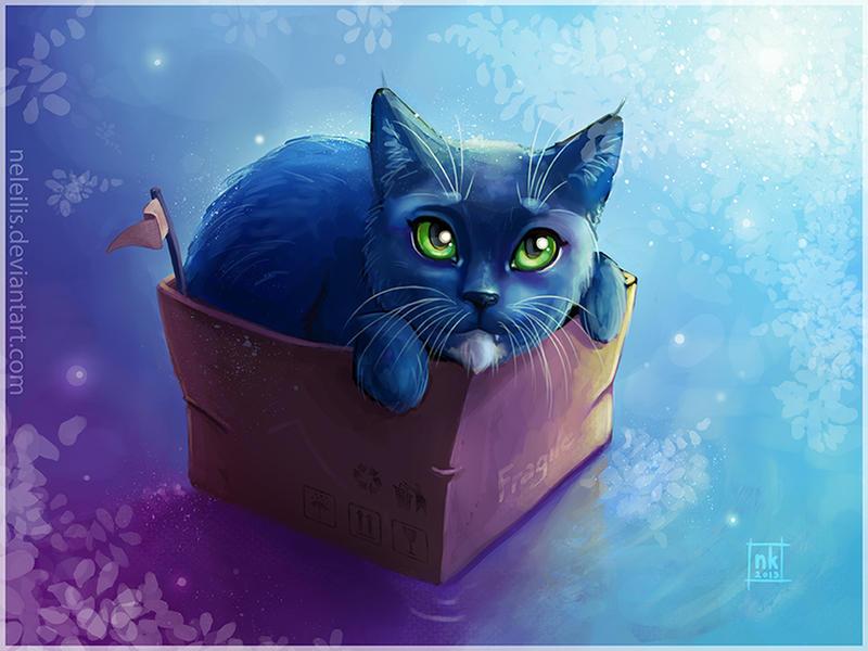 Cat+box by NelEilis