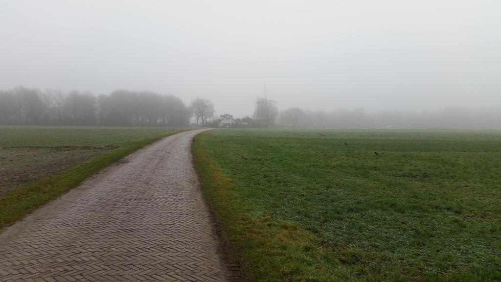 Misty morning . 10 by Grendelkin