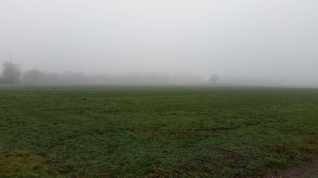 Misty morning . 11 by Grendelkin
