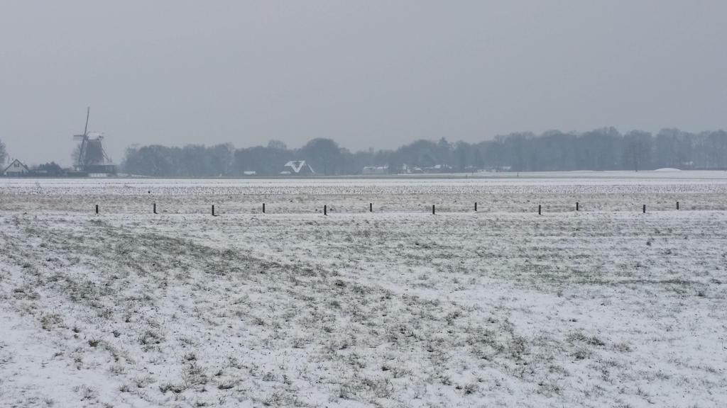 Winter Wasteland . 21 by Grendelkin