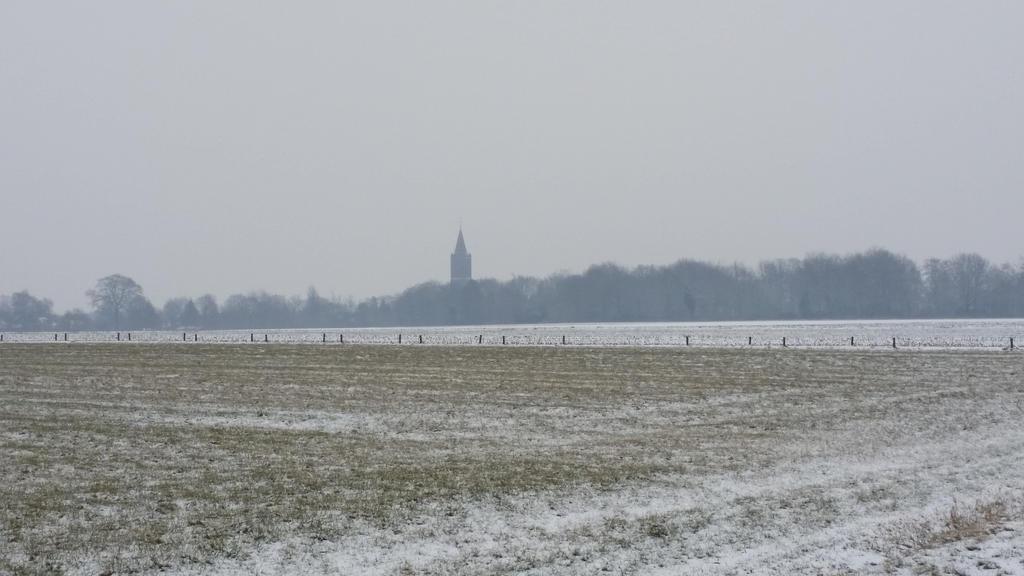 Winter Wasteland . 22 by Grendelkin