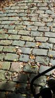 A slice of autumn . 1 by Grendelkin