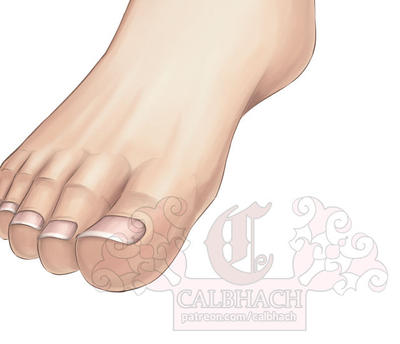 Foot Tutorial on Patreon by calbhach