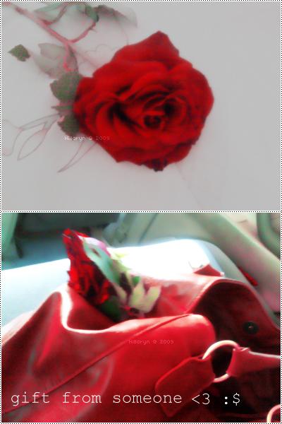 Crveno ... - Page 2 A_gift_by_Hillaryn