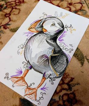 Purple Puffin