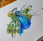 Drawing of an Elegant Bird