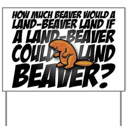 LAND A BEAVER... by PeridotPangolin