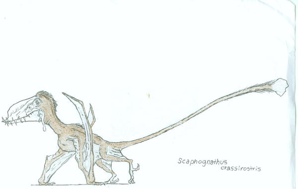 Scaphognathus unfinished by Ashere