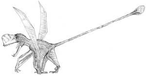 Austriodactylus cristatus by Ashere