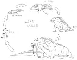 Hellbender Life Cycle by Ashere