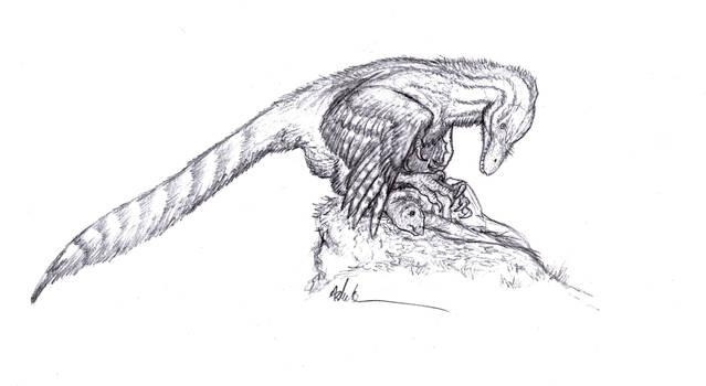 Mantling Dromaeosaur by Ashere