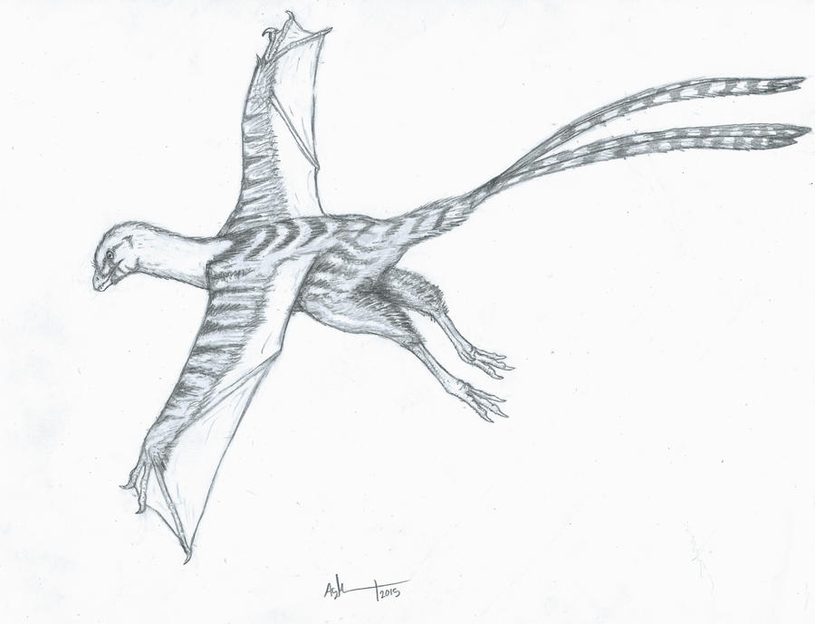 The Wyvern Dinosaur by Ashere