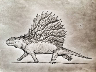 The Grand Dimetrodon by Ashere