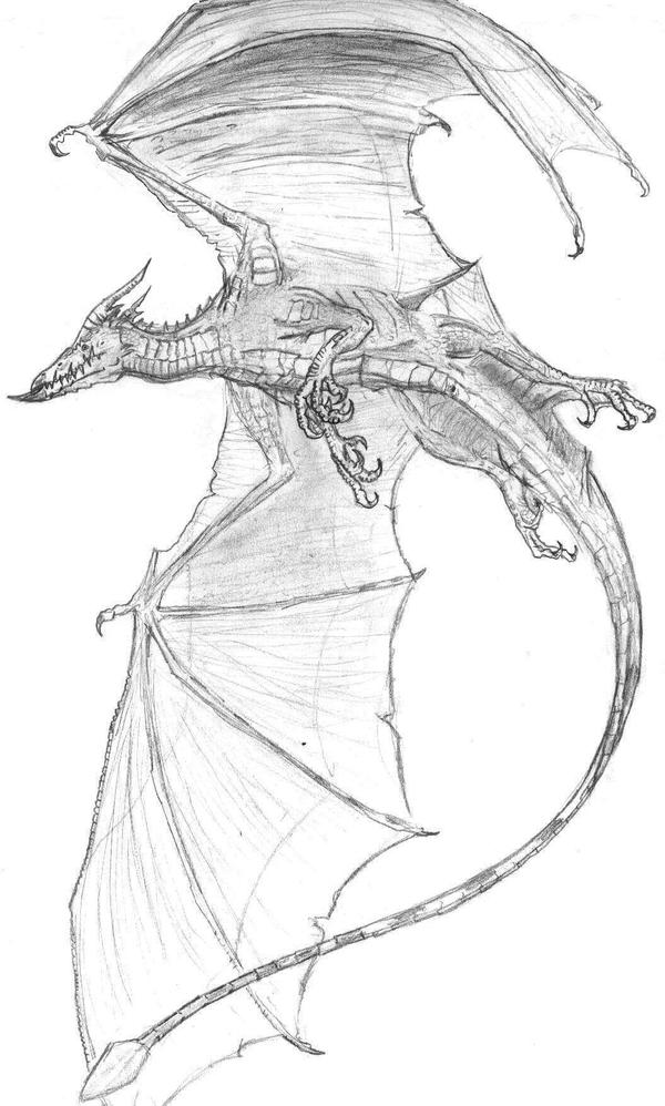 Bat Dragon by Ashere on Devian...