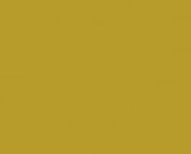 Regimen Logo Design by LunaDarkness