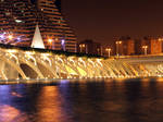 Valencia - City or art and science 4 - night