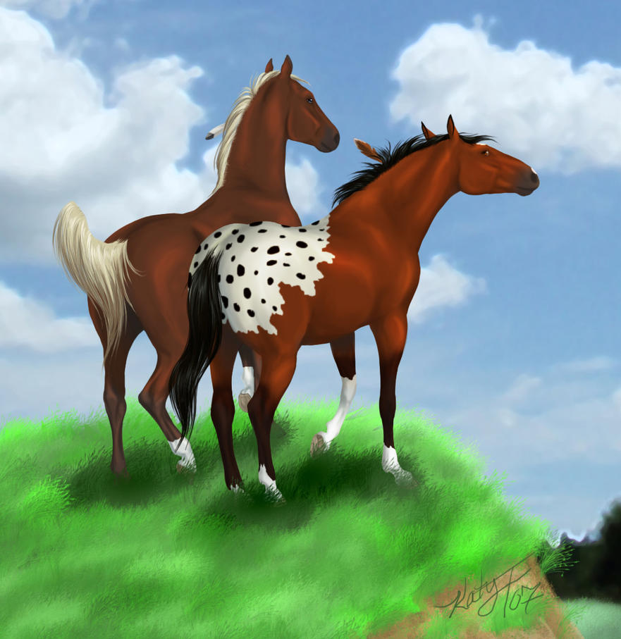 Pferde Anime