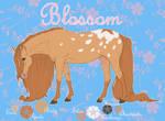 Blossom Ref. Sheet