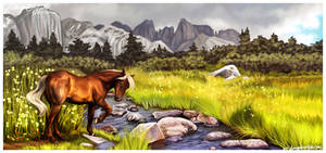 Casari's Creek by daughterofthestars