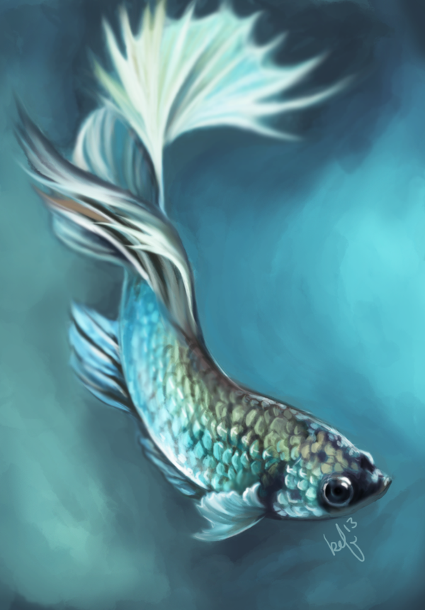 Betta fish by daughterofthestars on deviantart for Betta fish painting