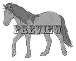 Mustang Line Art for Sale
