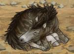 Velo Newborn - Earth