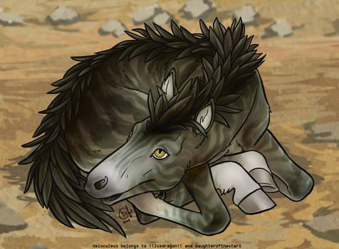 Newborn Foal - Earth Raptor