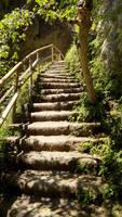 Stairways to the Wild