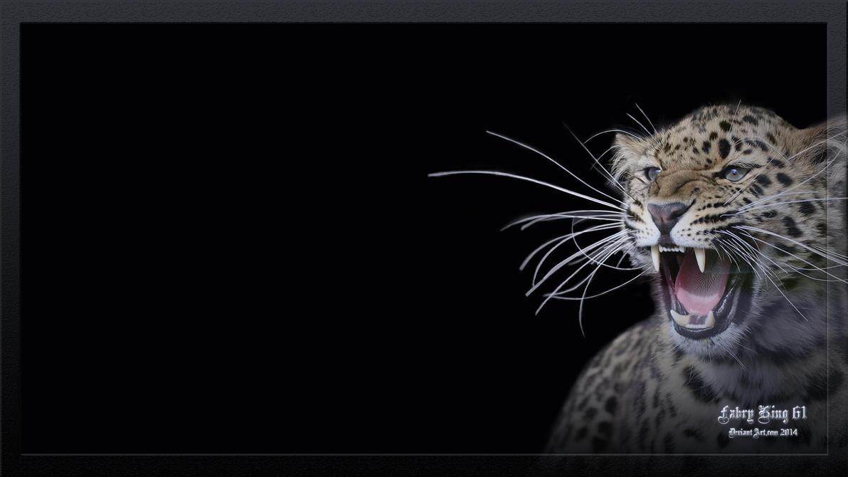 Leopard Desktop Animals 1920 x 1080 by FABRYKING61