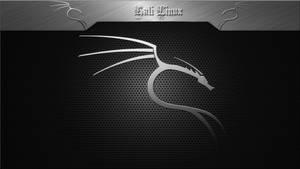 Kali Linux Silver 1920 x 1080