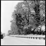6x6 Snow