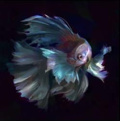 Fish Study by Javoraj