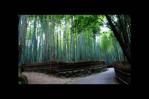 Arashiyama Bamboo by Osiris-NihonWa