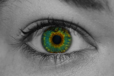 Prismatic Sight