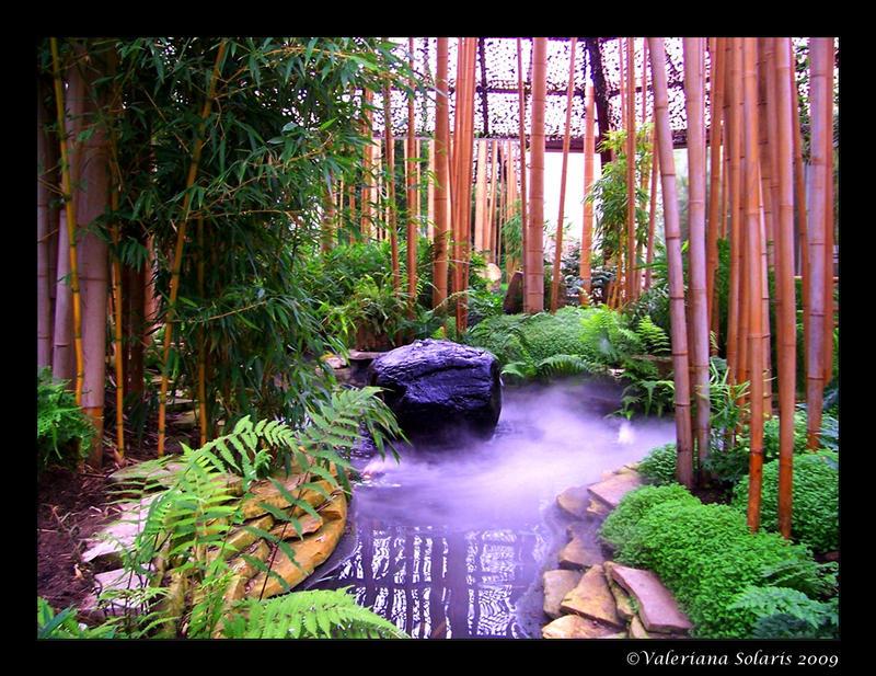 Bamboo Garden2 By ValerianaSolaris On DeviantART