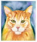 Cat, Watercolor Painting