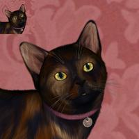 Cat Portrait Icon - Ambrosia