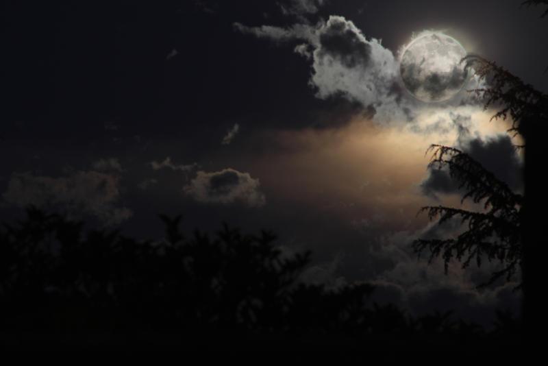 Full Moon by Artfoundry