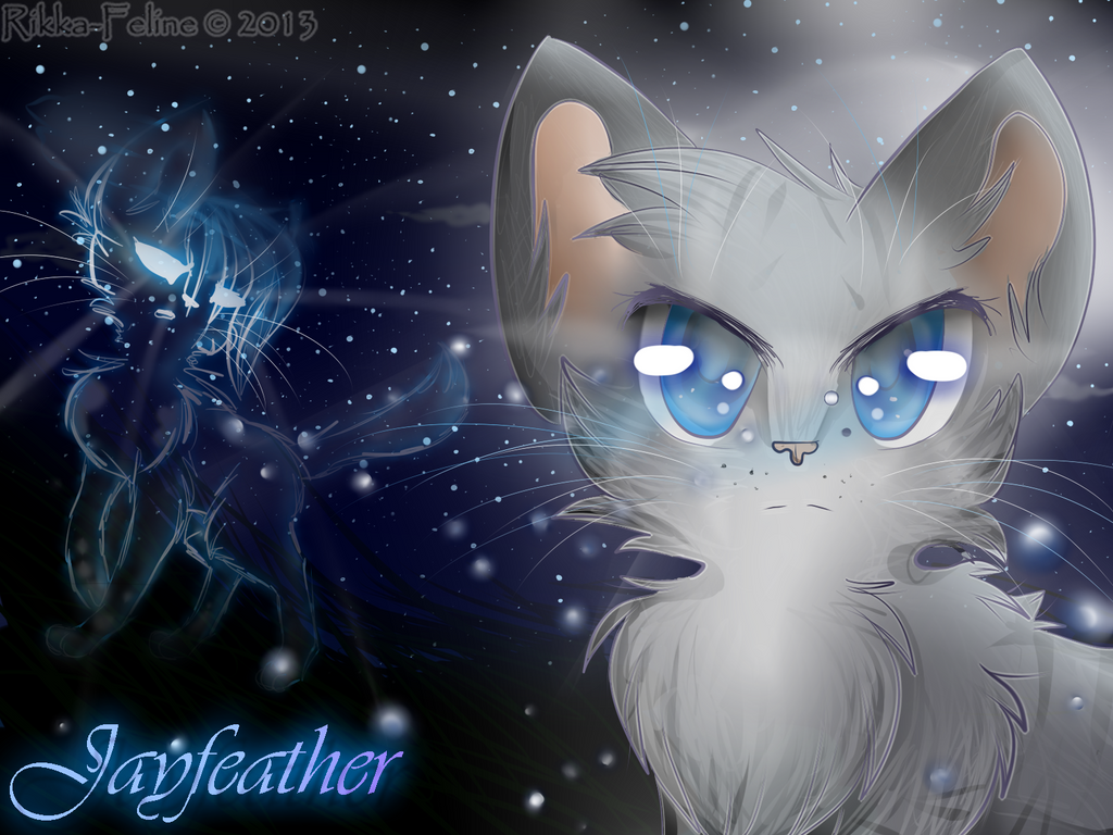 warrior cats wallpaper jayfeather viewing gallery