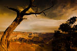 Grand Canyon from Desert View by gursesl