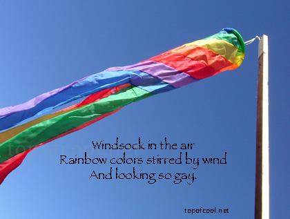 Haiku About Stuff: Wind Sock by EarwigOfJustice