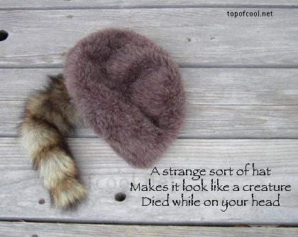 Haiku About Stuff: Fuzzy Hat by EarwigOfJustice