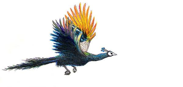 Flyingpeacock Explore Flyingpeacock On DeviantArt - Flying peacocks look like mythical creatures