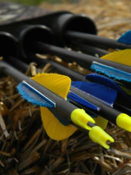 Arrows I