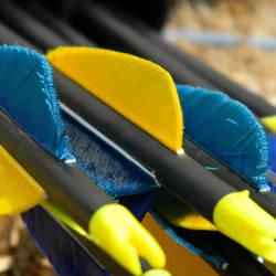 Arrows II