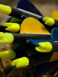 Arrows V