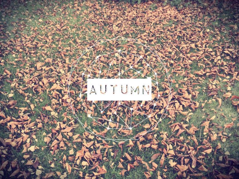 Autumn by aeli9