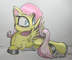 Fluttershy Preening - Me and Aero by Chopsticks-Pony
